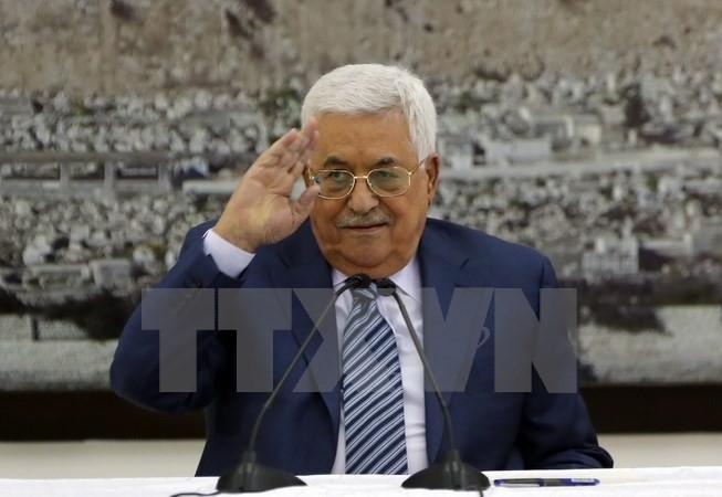 Palestina mengusahakan sponsor internasional yang baru bagi proses perdamaian Timur Tengah - ảnh 1