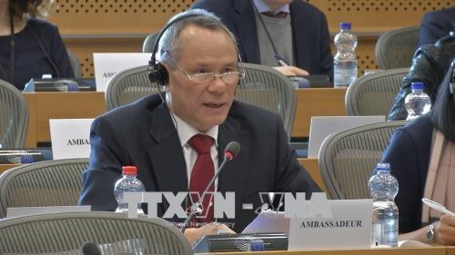 Parlemen Eropa mendorong Perjanjian Perdagangan Bebas dengan Vietnam - ảnh 1