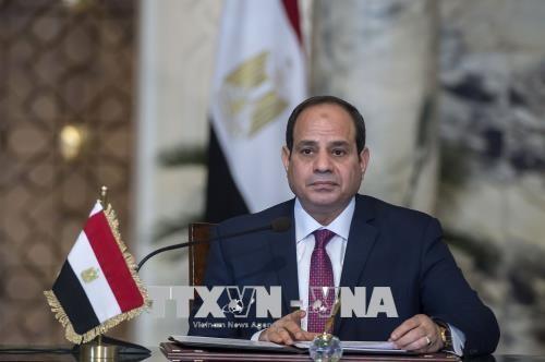 Pilpres Mesir: Presiden Abdel Fattah al-Sisi resmi terpilih kembali menjadi Presiden Mesir masa bakti ke-2 - ảnh 1