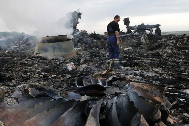 Presiden Vladimir Putin: Rudal yang menjatuhkan pesawat MH17 bukan milik Rusia - ảnh 1