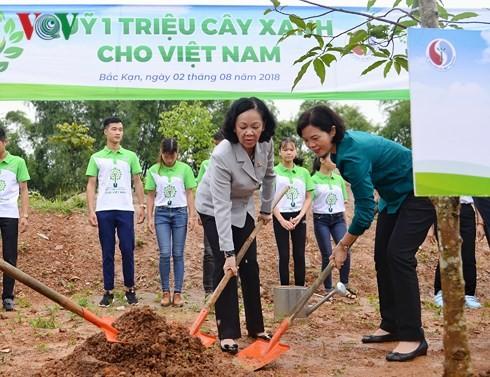 "Program ""Dana sejuta pohon hijau bagi Vietnam"" di Provinsi Bac Kan - ảnh 1"