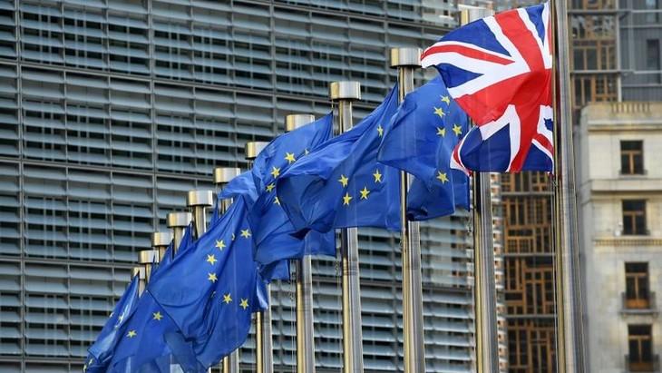 Parlemen Eropa resmi meratifikasi Permufakatan Brexit - ảnh 1