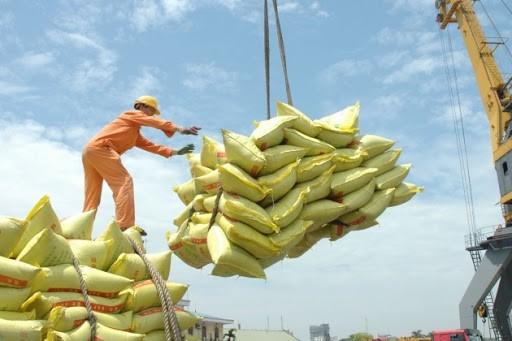 PM Pemerintah setuju mengekspor beras kembali tetapi harus menjamin ketahanan pangan - ảnh 1