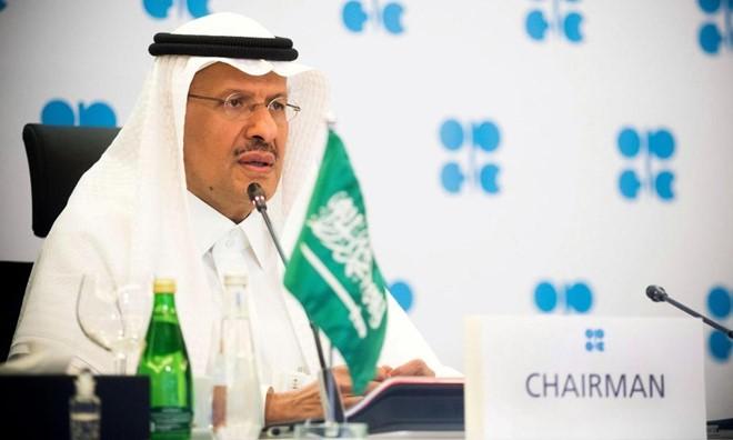 Peluang menstabilkan pasar minyak dunia - ảnh 1