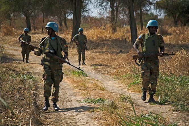Vietnam mendukung Sudan dan Sudan Selatan memecahkan sengketa di Abyei melalui solusi damai - ảnh 1