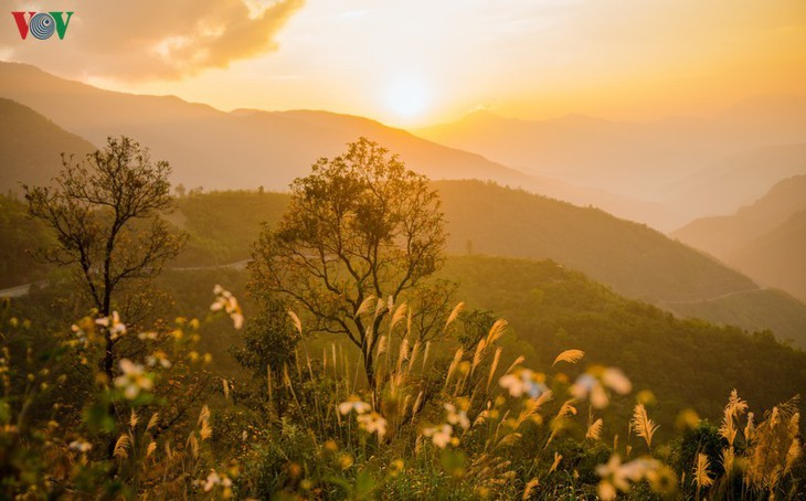 Daerah A Pa Chai ujung barat  – tempat di mana suara ayam berkokok didengarkan di tiga negeri - ảnh 4