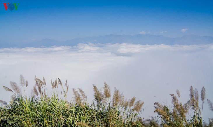 Daerah A Pa Chai ujung barat  – tempat di mana suara ayam berkokok didengarkan di tiga negeri - ảnh 6