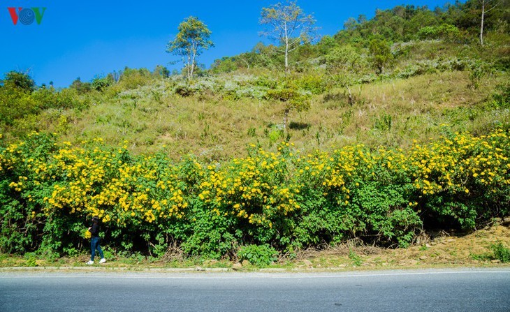 Daerah A Pa Chai ujung barat  – tempat di mana suara ayam berkokok didengarkan di tiga negeri - ảnh 2