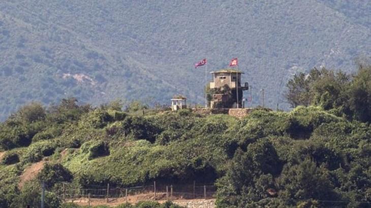Markas Komando PBB melakukan investigasi terhadap kasus tembakan di perbatasan antara dua bagian negeri Korea - ảnh 1