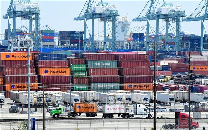APEC mengimbau kerjasama perdagangan dalam memecahkan tantangan-tantangan akibat wabah Covid-19 - ảnh 1
