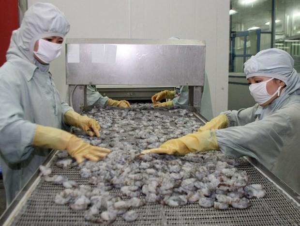Memulihkan pasar ekspor udang - ảnh 1