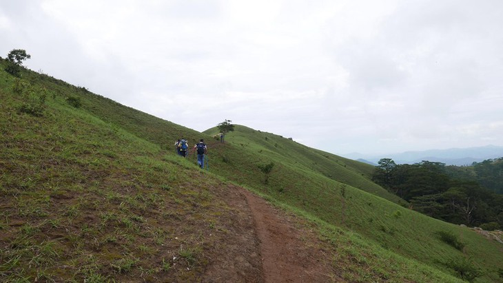 Ta Nang-Phan Dung, jalan di mana para wisatawan bisa menikmati keindahan daerah pegunungan - ảnh 1