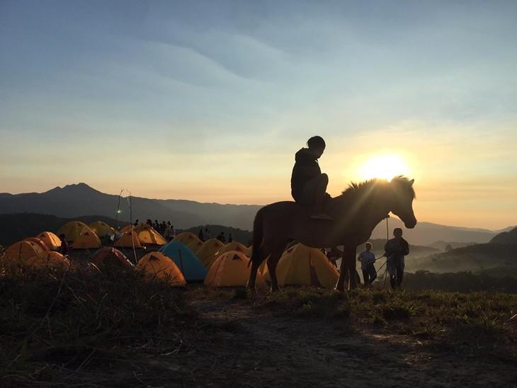 Ta Nang-Phan Dung, jalan di mana para wisatawan bisa menikmati keindahan daerah pegunungan - ảnh 4