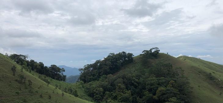 Ta Nang-Phan Dung, jalan di mana para wisatawan bisa menikmati keindahan daerah pegunungan - ảnh 3