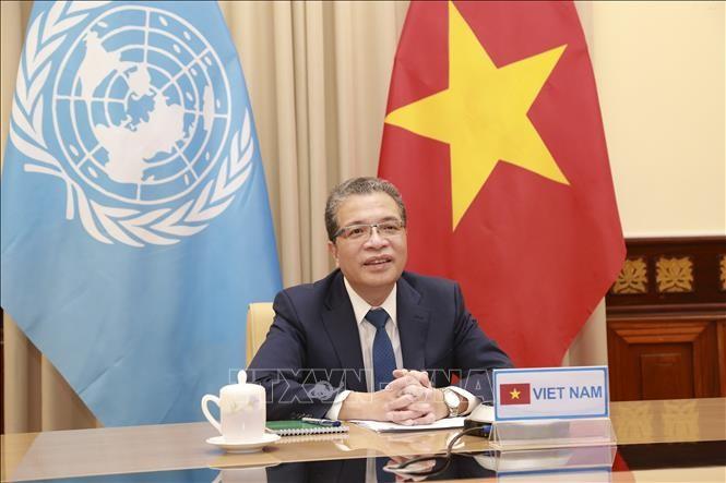 Vietnam mendukung semua upaya dan gagasan untuk mencapai satu solusi komprehensif bagi masalah Palestina - ảnh 1