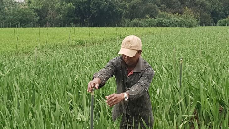 Seorang Anggota Partai Komunis yang Berwibawa di Dusun K'Long - ảnh 1
