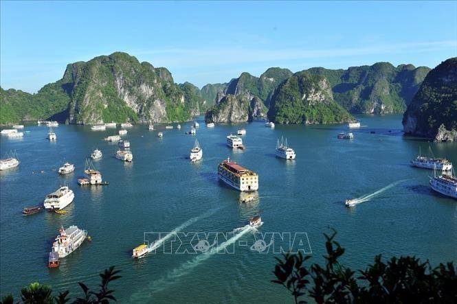 """Kantor Berita Jerman """"DPA"""" Kenalkan Beberapa Destinasi Wisata Terkemuka di Vietnam - ảnh 1"""