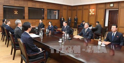 Koreas hold 'thorough' talks on upcoming summit  - ảnh 1
