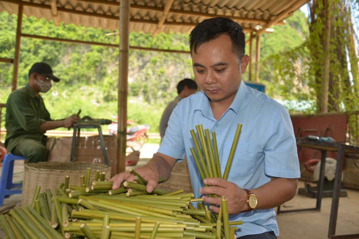 Recycling waste, ecobrick use, bamboo straws help reduce plastic pollution - ảnh 4
