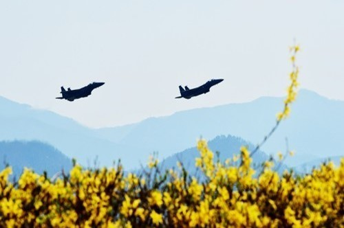 South Korea, US hold joint air exercises - ảnh 1
