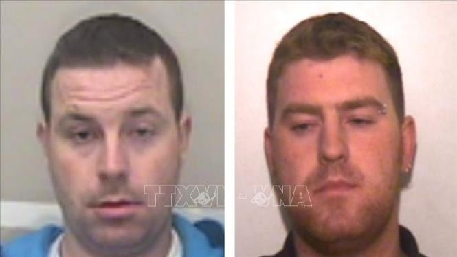 Essex lorry deaths: Ronan Hughes to be extradited to UK - ảnh 1