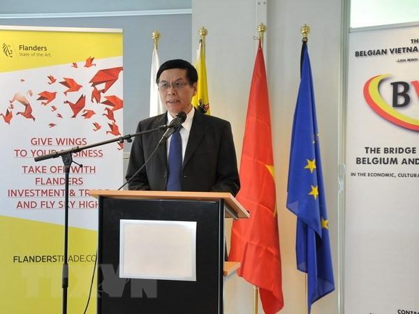 Badan usaha Belgia memperkuat kerjasama hubungan perdagangan dengan Vietnam - ảnh 1