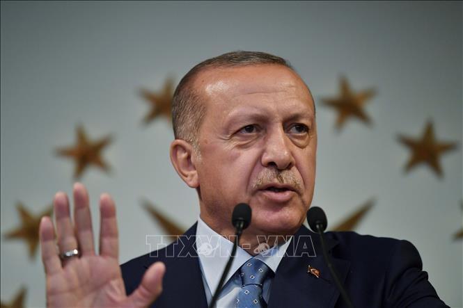 Turki siap meciptakan mekanisme pertukaran perdagangan dengan Iran - ảnh 1