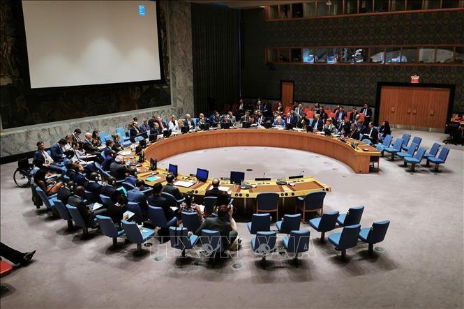 Persidangan terbatas di DK PBB tentang masalah RDRK - ảnh 1