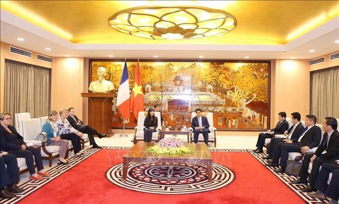 Kota Hanoi memperkuat kerjasama dengan Perancis di bidang perkembangan perhubungan dan perkotaan - ảnh 1