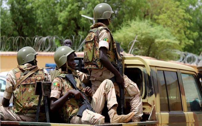 IS mengakui melakukan serangan terhadap tentara Mali - ảnh 1