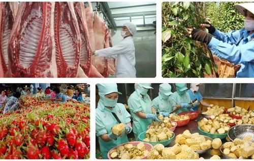 Para petani ikut serta pada arena main global: peluang banyak, tantangan besar - ảnh 1