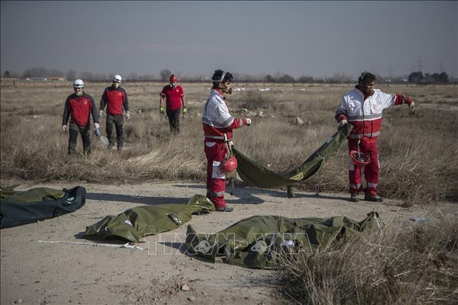 Ukraina akan memberikan santunan kepada keluarga para korban dalam kecelakaan pesawat terbang di Iran - ảnh 1