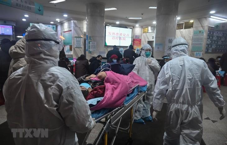 Wabah penyakit radang paru-paru akibat Virus Corona: jumlah kematian di Tiongtok terus meningkat - ảnh 1