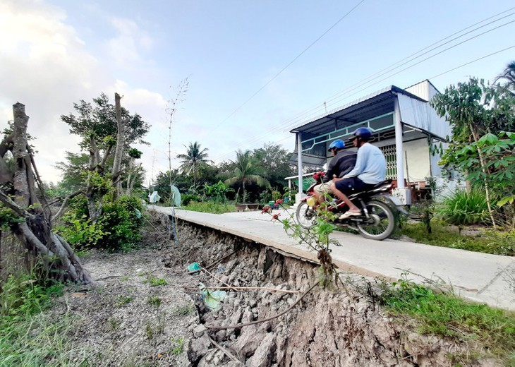 Kekeringan merusakkan Ujung Ca Mau - ảnh 10