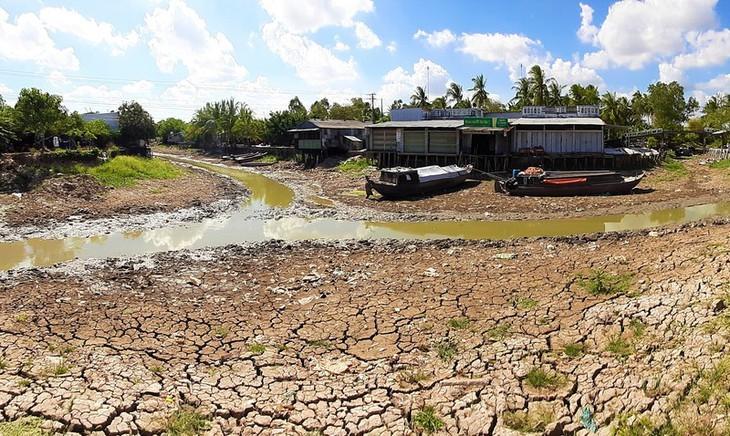 Kekeringan merusakkan Ujung Ca Mau - ảnh 4