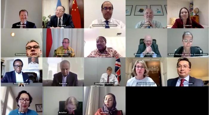 DK PBB melakukan perbahasan onlin tentang  situasi Afghanistan - ảnh 1