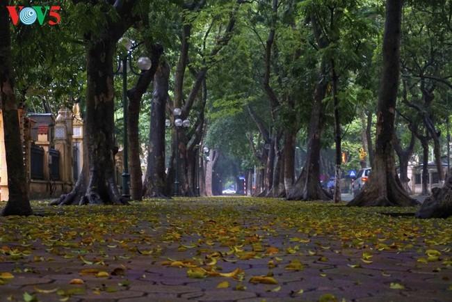 Pemandangan Kota Hanoi yang tenteram sentosa pada pembatasan sosial - ảnh 1