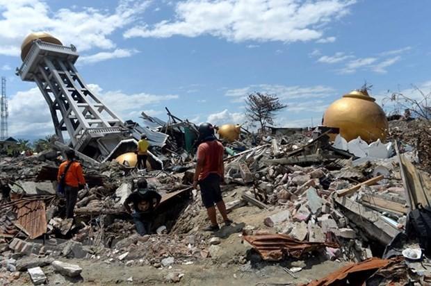 ASEAN terus membantu para korban gempa dan tsunami di Indonesia - ảnh 1