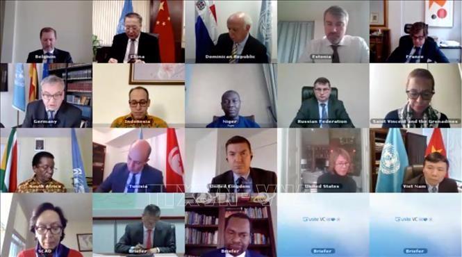 DK PBB membahas pelaksanaan permufakatan perdamaian di kawasan Danau Besar - ảnh 1
