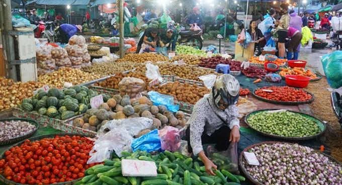 Instansi pertanian secara tepat waktu memberikan informasi dan merapati pasar ekspor hasil pertanian - ảnh 1