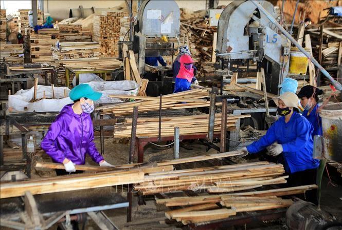 Pengolahan dan ekspor kayu Vietnam berinisiatif mencari pasar, mencapai target sebanyak12 miliar USD - ảnh 1