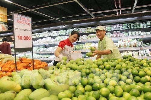 Konektivitas produksi dan pemasaran hasil pertanian di zona ekonomi Selatan - ảnh 1