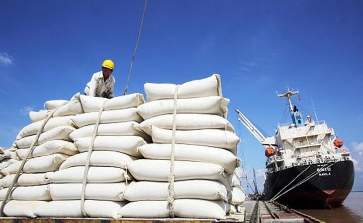 Vietnam memenangkan tender untuk mengekspor 30 ribu ton beras ke Filipina - ảnh 1