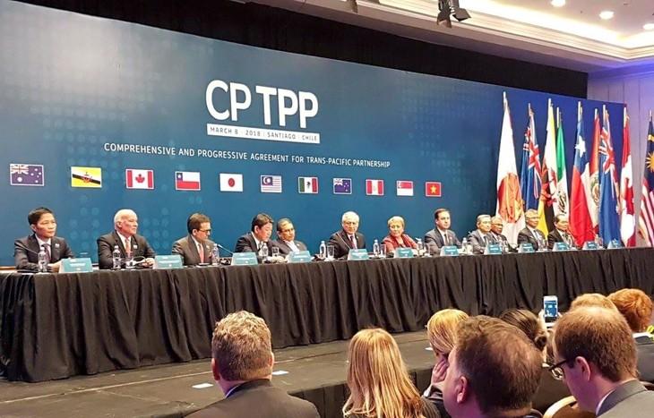 Negara-negara anggota CPTPP mempertimbangkan untuk menyelenggarakan konferensi menteri secara online - ảnh 1