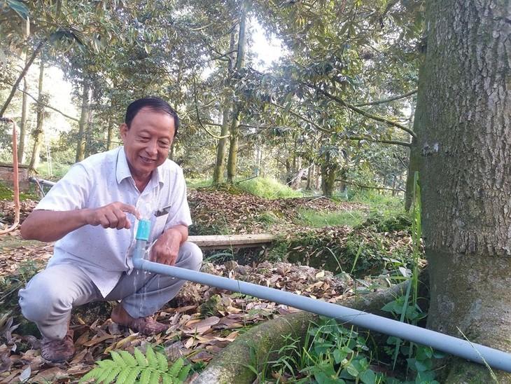 Solusi Pengembangan Pertanian untuk Menghadapi Salinisasi - ảnh 1