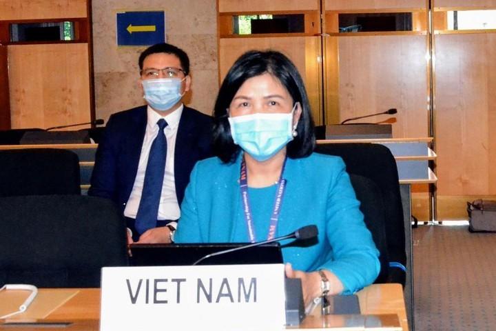 Vietnam aktif ikut menyusun isi naskah-naskah persidangan periodik ke-44 Dewan HAM PBB - ảnh 1