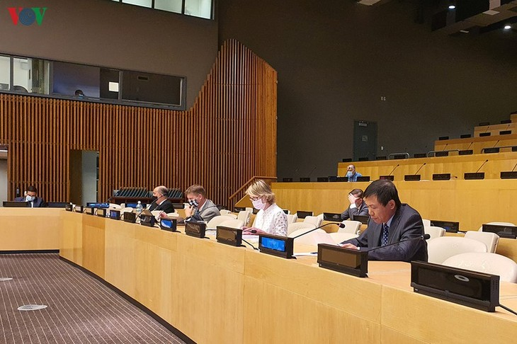 DK PBB mendukung kedaulatan, kemerdekaan, dan keutuhan wilayah Yaman - ảnh 1