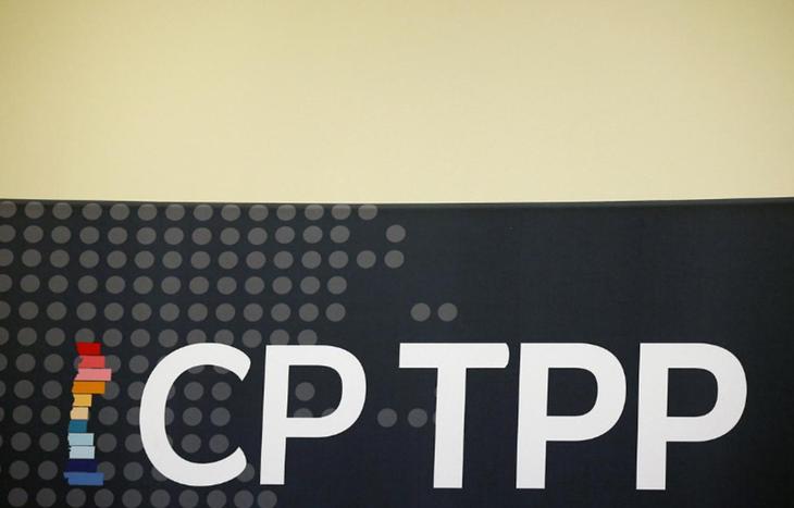 Negara-negara CPTPP sepakat mendorong perekonomian di tengah wabah Covid-19 - ảnh 1
