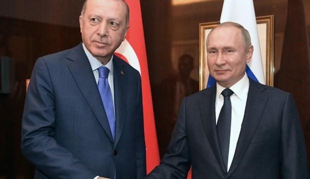 Presiden Rusia dan Turki membahas bentrokan-bentrokan di Libya dan Suriah - ảnh 1