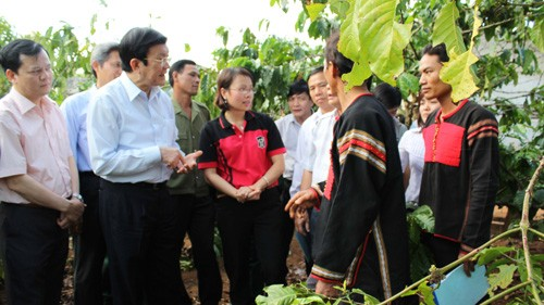 Staatspräsident arbeitet mit dem Volksgericht der Provinz Dak Lak - ảnh 1
